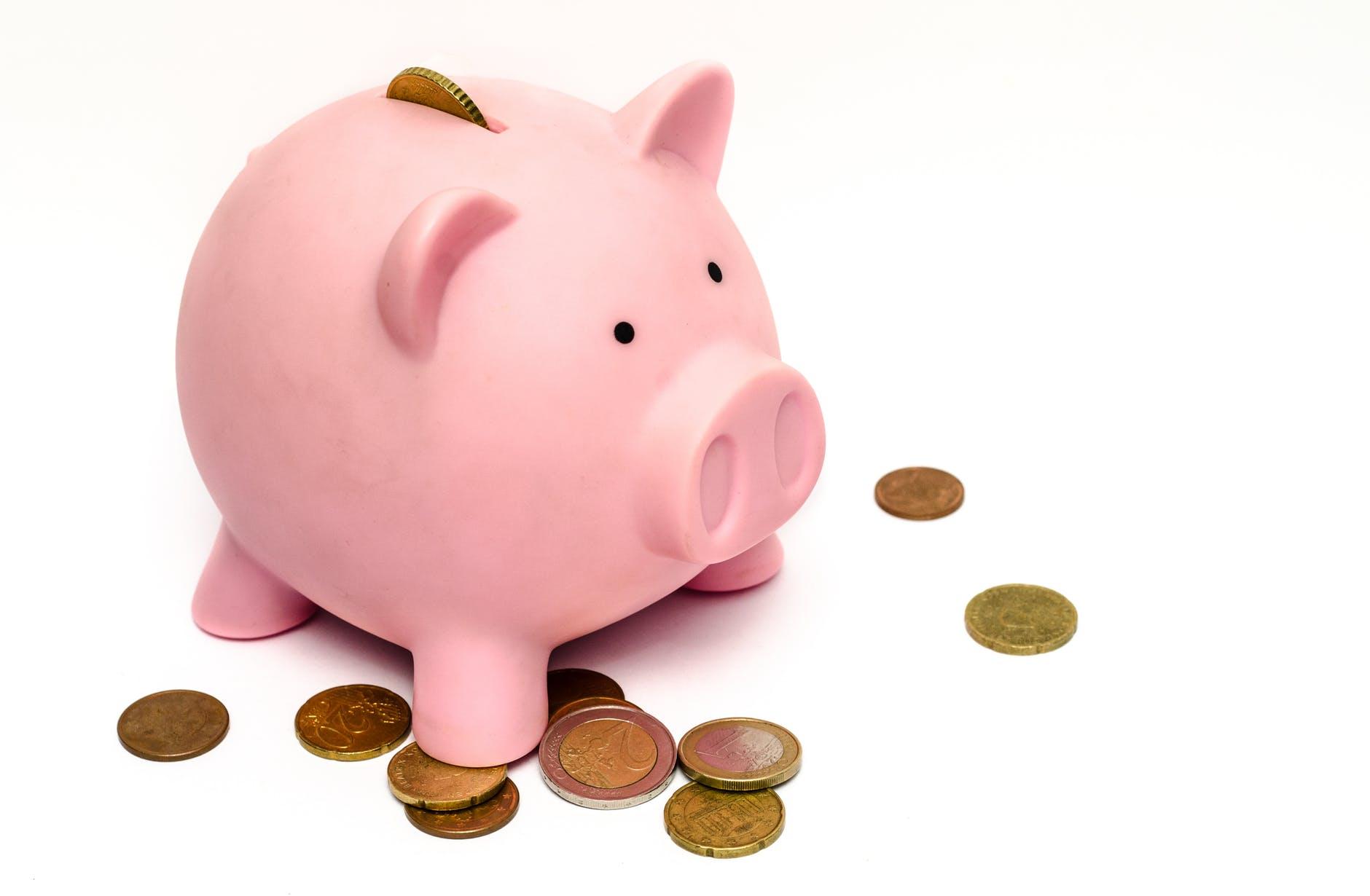 money pink coins pig